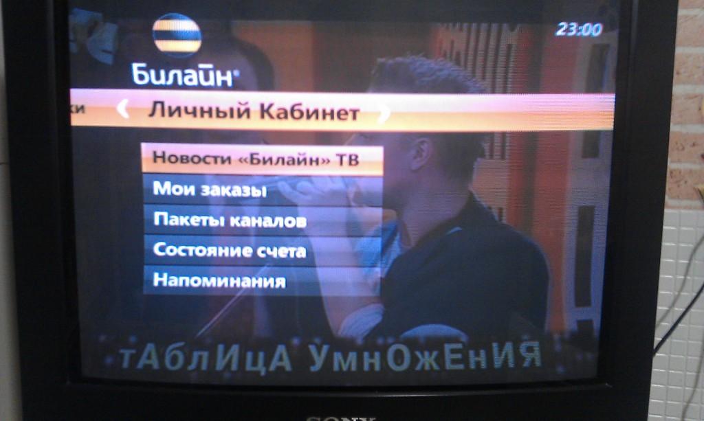 Настройка телевидения Билайн ТВ